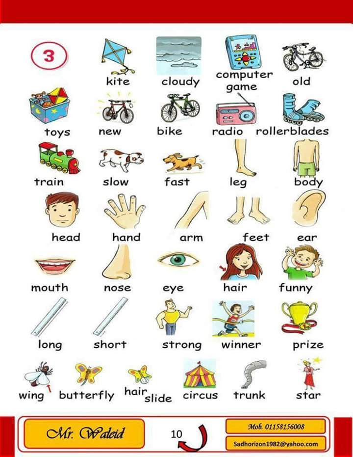 my-picture-dictionary-4